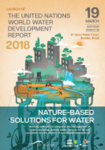 WWAP at the 8th World Water Forum